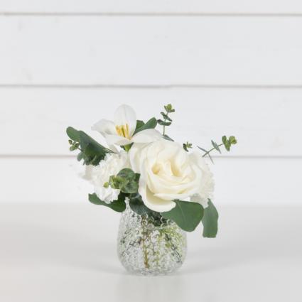 Lace Sleek, Garden, Minimal, Monochromatic, Elegant