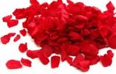 CORSAGE BOX OF ROSE PETALS RED ROSE PETALS