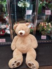 Extra Large Large Bear