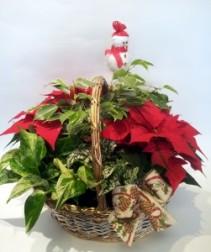 Large Christmas Planter Basket