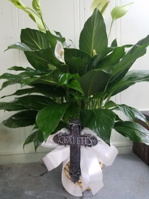 Large Cross of Faith Plant Green Plant in Henderson, TX | RAYFORD FLORIST & GIFTS