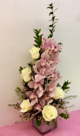 M12 Divine Orchids and Roses