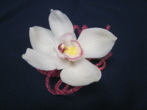 Large Cymbidium with hot pink Tube Ribbon, $30.00