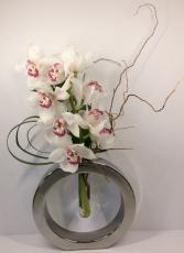 Orchid Cirque