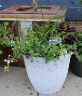Large Patio Floor Pots Annual Planter