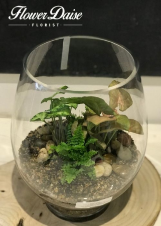Large Terrarium Plants in Glass Vase