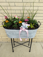Large Tin Porch Box blooming
