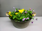 Lavender and yellow violas in rustic tin Outdoor plant