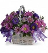 Lavender Daisy Basket Birthday Flowers