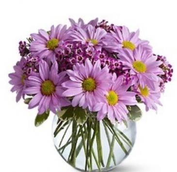 Lavender Daisy Bouquet  Vase