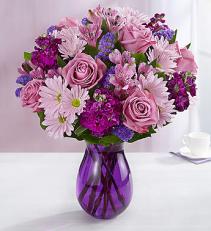 Lavender Dreams  161710