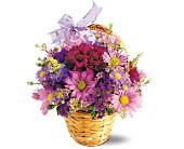 Lavender Garden       TF-F7 Fresh Floral Arrangement