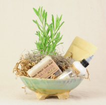 Lavender Lover's Dream Plant & Locally Made Pottery