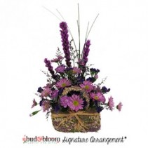 Lavender Majesty - SOLD OUT Floral Arrangement