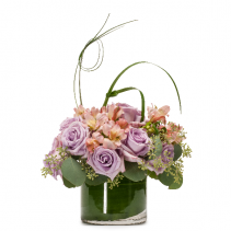 Lavender Melody Arrangement