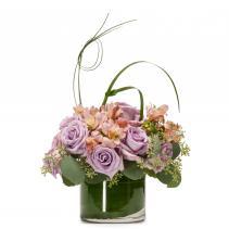 Lavender Melody Arrangement