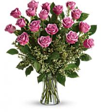 Lavender Surprise Roses