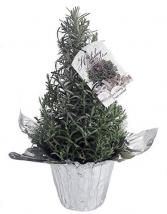 Lavender Tree Christmas