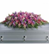 Lavender Tribute  T232A