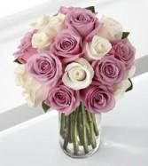 Lavender & White 18 Roses