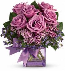 Lavishly Lavender Roses Lavender Roses