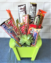 LAWN CHAIR WITH MIX OF CHOCOLATE BARS   LIVE SUCCULENT INCLUDED
