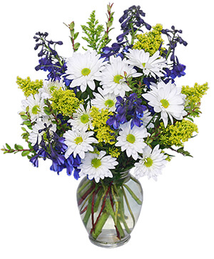 Lazy Daisy & Delphinium Just Because Flowers in Fitchburg, MA | CAULEY'S FLORIST & GARDEN CENTER