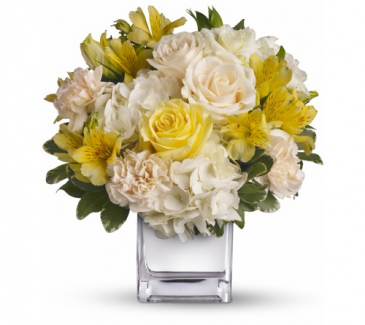 Lemon delight pleasant arrangement