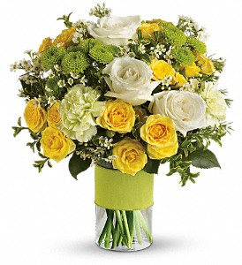 Lemon Lime Delight Arrangement