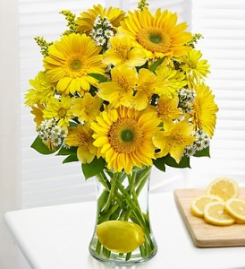 Lemon Love  in Fair Lawn, NJ | Dietch's Florist