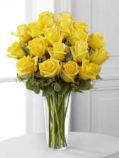 Lemon Yellow E7-4808d