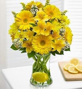Lemonade Vase Arrangement EF44