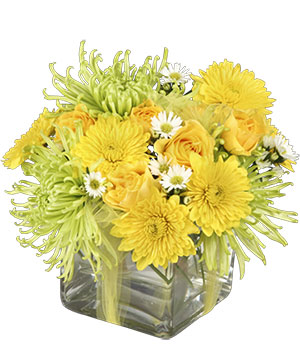 Lemon-Lime Zest Arrangement in Newport, ME | Blooming Barn Florist Gifts & Home Decor