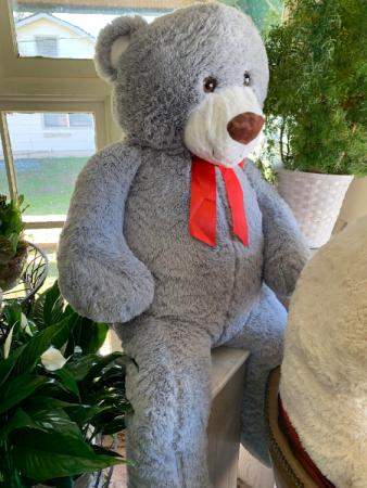 Life Size Super Large Cuddly Bear