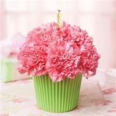 Light Pink Cupcake in Bloom Birthday Flowers