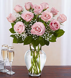 Light Pink Dozen Roses W/Baby Breath Floral Arrangement in Winston Salem, NC | RAE'S NORTH POINT FLORIST INC.