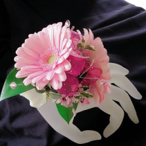 Light Pink Gerb Corsage Corsage