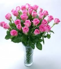 Pink Pleasure 2 Dozen Light Pink Roses