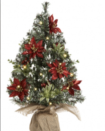 Light up Evergreen Tree with Poinsettias