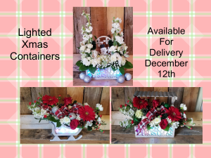Lighted Keepsake Containers Holiday Special in Paris, KY | Chasing Lilies Floral