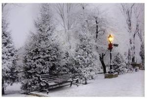 Lighted LED Snowfall in the Park Picture Gift Item in Croton On Hudson, NY | Cooke's Little Shoppe Of Flowers