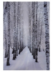 Lighted LED Winter Pathway Picture Gift Item
