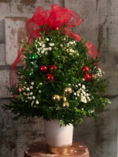 Lighted Table Top Christmas Tree center piece