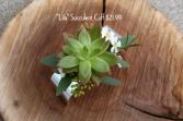 Lila Succulent Cuff Corsage