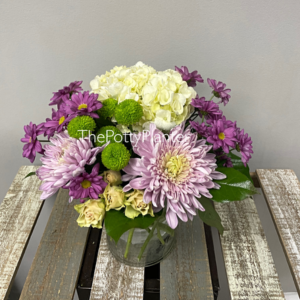 Lilac and Lime  in Etobicoke, ON | THE POTTY PLANTER FLORIST