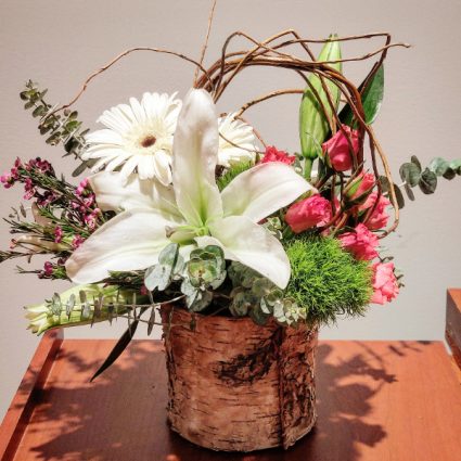 Lilies & Birch Spring