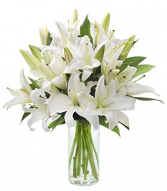 Lilies for my Love Choice of White or Pink Lilies in clear vase