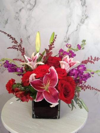 Striking Oriental Lily