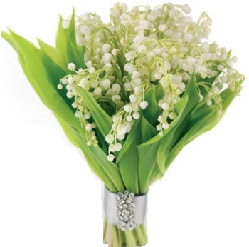 Lily Of The Valley Bridal Bouquet In Garrett Park Md Rockville