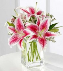 Lily pink for you  Thomaston florist & Greenhouse